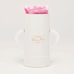 Solo white box rose doux